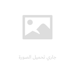 مهارات أساسية في اللغة العربية (1)